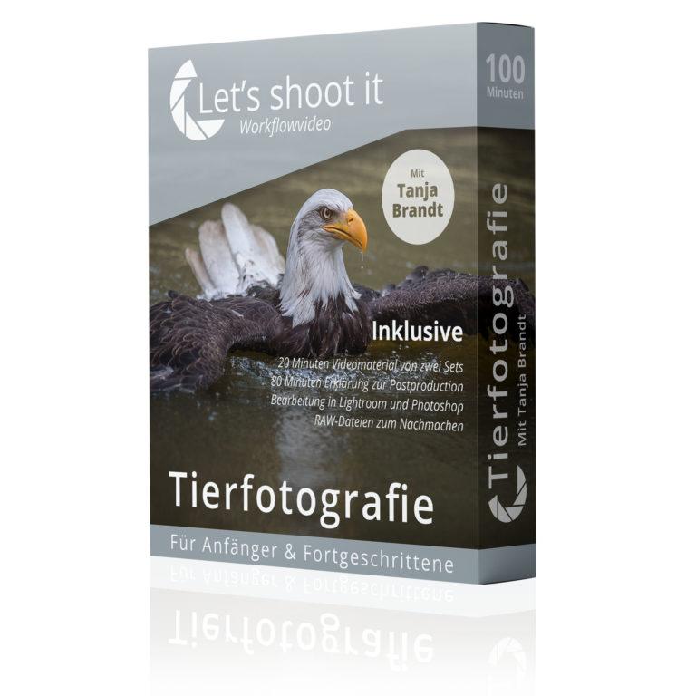 Tierfotografie lernen mit Tanja Brandt - ein Videotraining von Let's shoot it